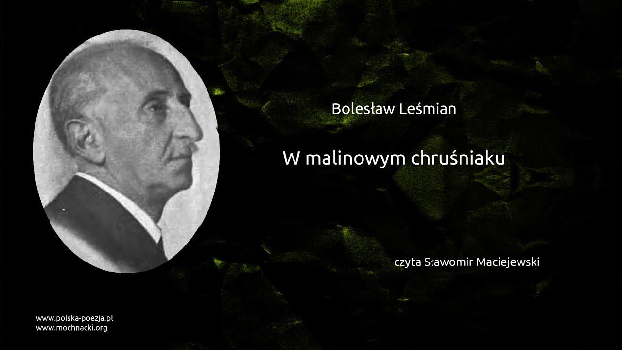 Bolesław Leśmian W Malinowym Chruśniaku