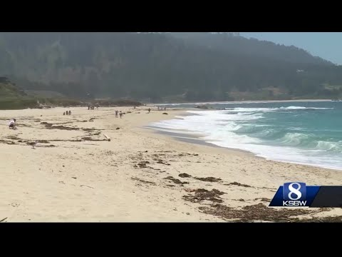 Tourists and residents in Monterey County say they're confused over which beaches are open