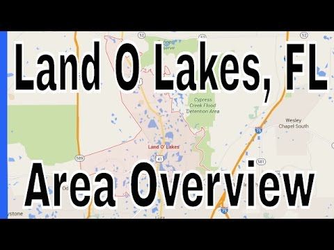 Homes for Sale in Land O Lakes FL - Land O Lakes Overview by Lance Mohr a Tampa Realtor