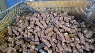 금강ENG 폐목재 펠렛 샘플 작업 영상