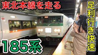 【国鉄型】185系で運転された臨時快速足利イルミネーション号に乗ってきた!!