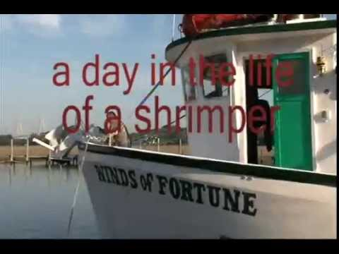 A Day in the Life of a South Carolina Shrimper