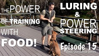 The Power of Training Your Dog with FOOD! Episode 15