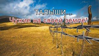 ТАЛЫШИ... Чужие на своей земле!: Talyshistan Tv 11.11.2019 News
