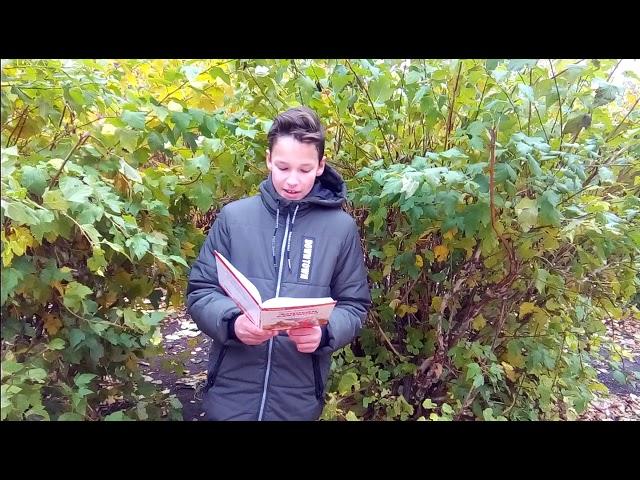Изображение предпросмотра прочтения – ГазинурГалиев читает произведение «Стихотворения в прозе. Воробей.» И.С.Тургенева
