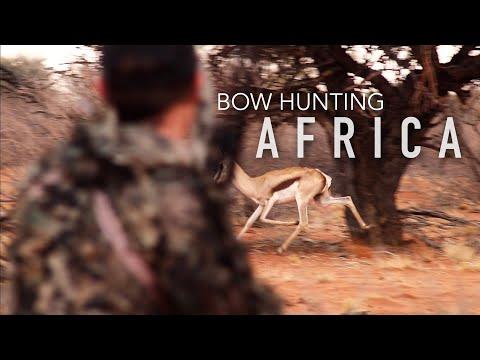 SPOT & STALK Springbok Hunt — Bow Hunting Africa