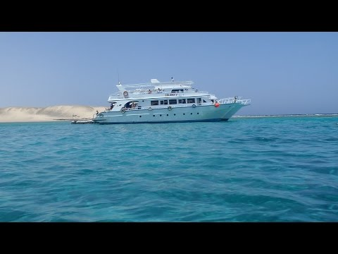 Diving in the Red Sea with Colona Divers - Marsa Alam