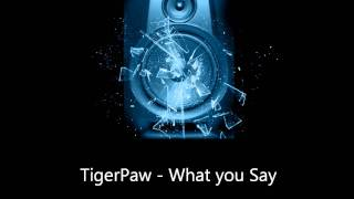 TigerPaw - What you Say.wmv