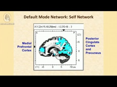 Dr  Fred Travis  default mode network becomes more active in TM