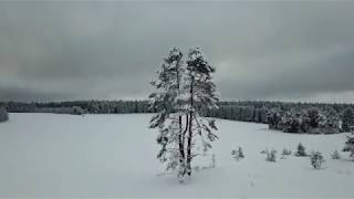 Loches - Winterzauber