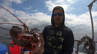 Download An ordinary ocean fisherman's day   condensed version