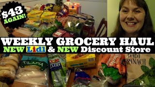 Weekly $43 Grocery Haul- NEW Lidl & NEW Discount Grocery
