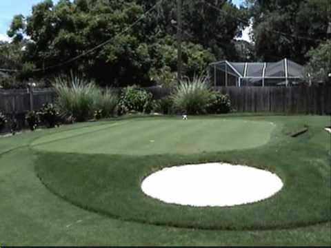 Putting Green backyard Sprigging And Grow In - YouTube