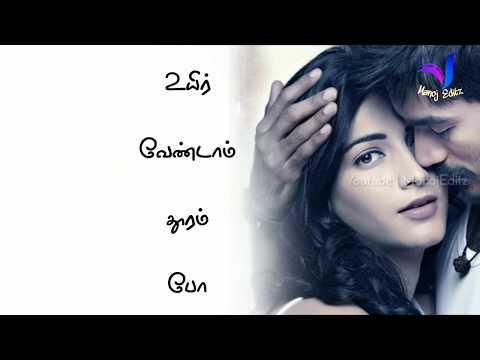 Whatsapp Status Tamil Video   Love Song   Po Nee Po