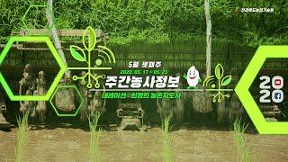 [ 주간농사정보 ] 5월 셋째주