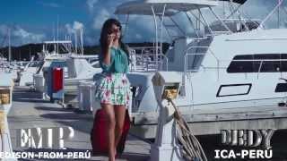 MIX VERANO 2014 DJ EDY(((VIDEOMIX)))