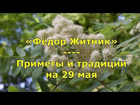 Народный праздник «Фёдор Житник». Приметы и традиции на 29 мая.