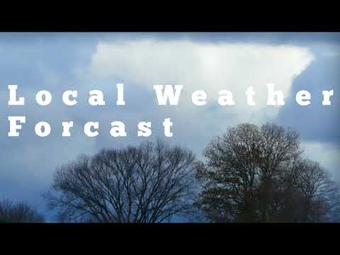Local Weather Forecast Regular Weather