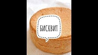 бисквит простой рецепт