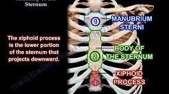 hqdefault - Depression At The Superior End Of The Sternum