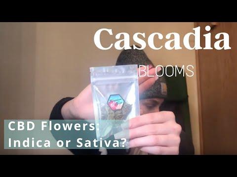 Cascadia Blooms CBD Flowers: Indica or Sativa?