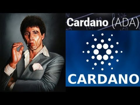 Cryptocurrency $8 Cardano King ADA BullRun Is Crypto Back Baby