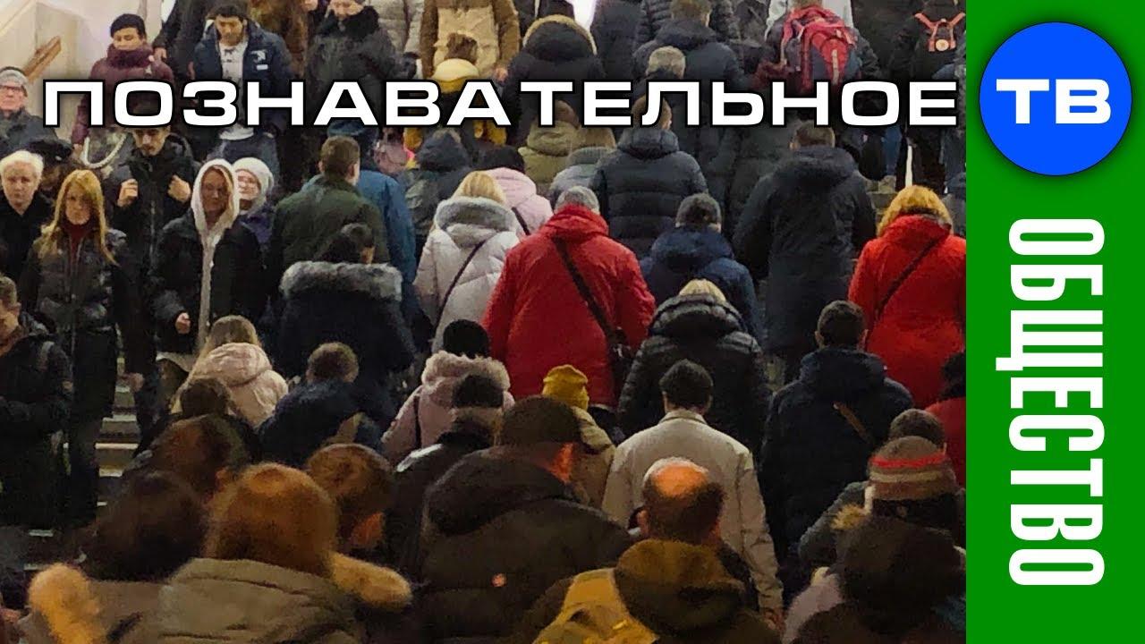 Как живёт Москва (Познавательные заметки)