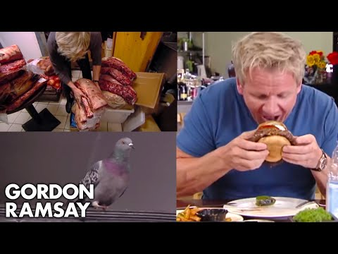 The Most Ridiculous Moments On Kitchen Nightmares