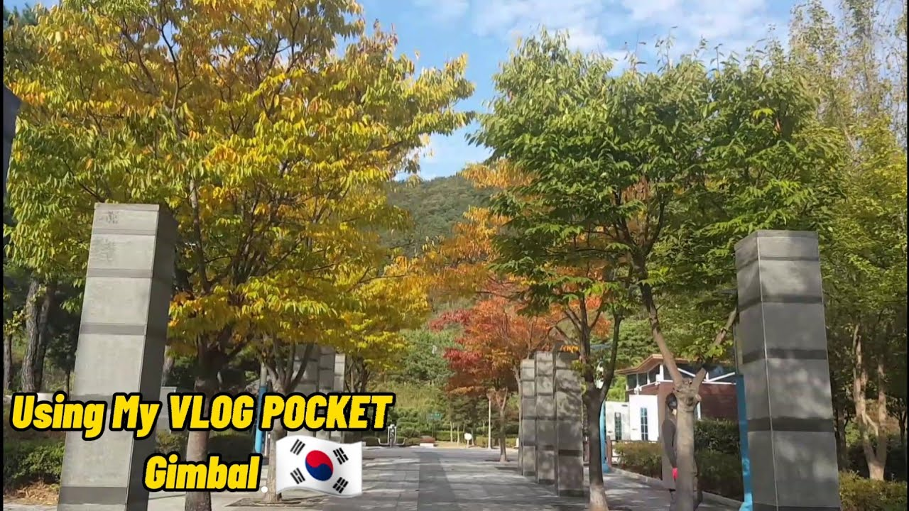 Download Autumn in Busan | Walking Routine | Using My VLOG POCKET (FEIYU) GIMBAL | Pinay Sa South Korea