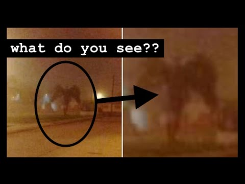 This Pic Is Going VIRAL! What do you see?? A DEMON? A Tree? ANGEL OF DEATH? Yo Momma???