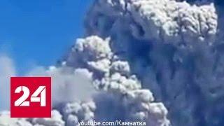Вулкан Шивелуч выбросил многокилометровый столб пепла