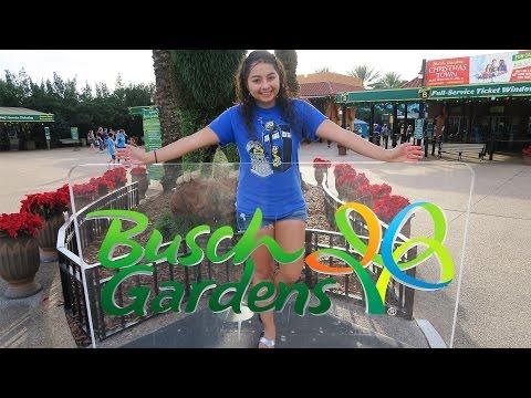 Busch Gardens Tampa Florida!