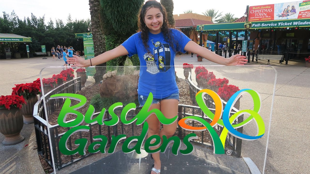 Busch Gardens Tampa Florida Youtube