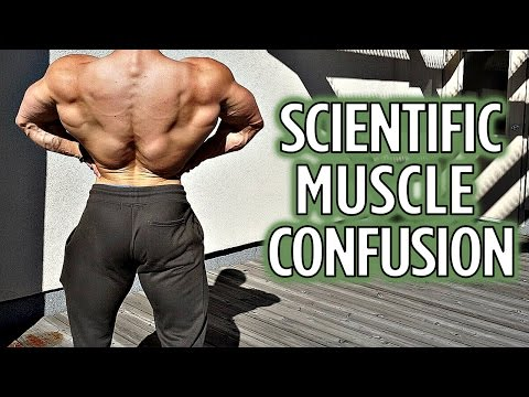 Using Muscle Confusion Scientifically | What's Happening in Florida?