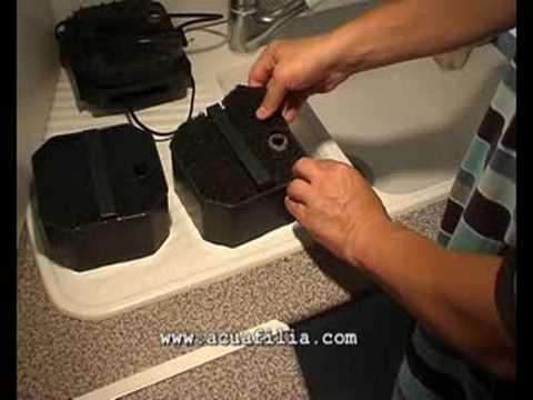 Limpieza filtro Eheim 2224 professionel mantenimiento