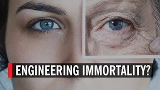 Engineering Immortality: the End of Aging?