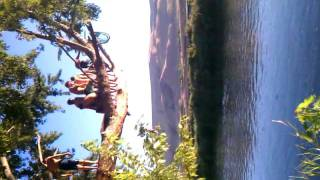 Benton city rope swing