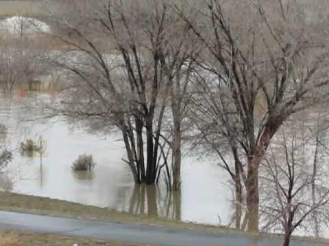 Humboldt River floods through Elko