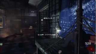 BO2 ゾンビ 武器改造までの道のり(トラ篇) thumbnail