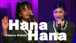 さくら学院「Hana*Hana」 2013年度 2016年度 2017年度 さくら学院 The R...
