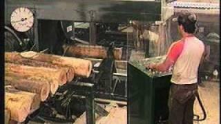 Pendu 6800 Small Log Scragg Mill