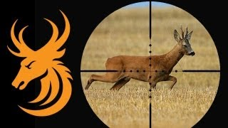 Repeat youtube video Hunting Wild Boar and Roebuck in Germany