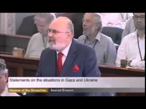 Statement on Gaza - Irish Parliament