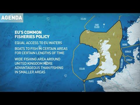 EU Fishing Future After Brexit