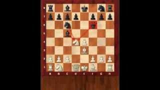 Основы шахмат 4. Основы дебюта. Шотландская партия. Шахматы. Евгений Гринис