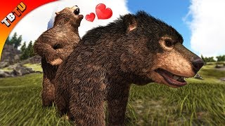 Download lagu NEW FULLY MUTATED TLC DIRE BEAR DIRE BEAR COLOR MUTATIONS Ark Survival Evolved MP3