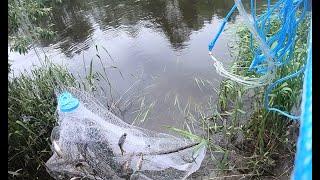Рыбалка кастинговой сетью на МАЛОЙ РЕКЕ 2 прикормил и сразу получил результат
