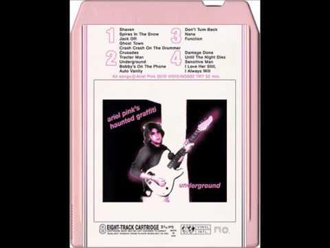 ariel pink-I love her still i always will