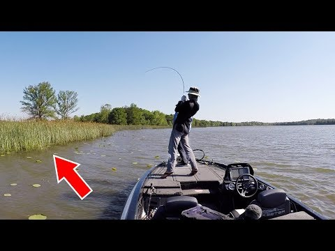 Fishing 3 LAKES in 8 hours to Find BIG BASS!