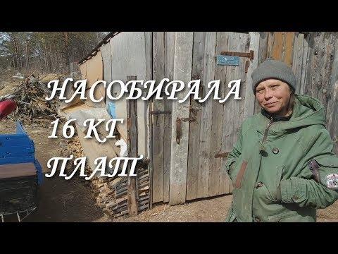 ЕДУ НА СВАЛКУ К АНЖЕЛЕ / РАДИОЛОМ